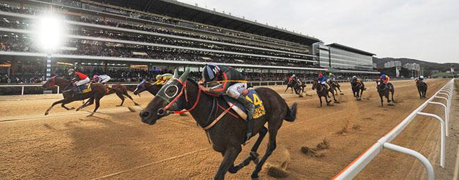 South Korea Horse Racing Calendar Sky Racing World